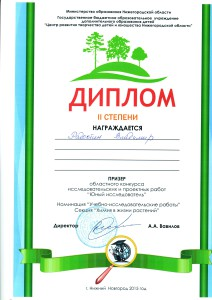 Радостин Владимир исследовательская работа
